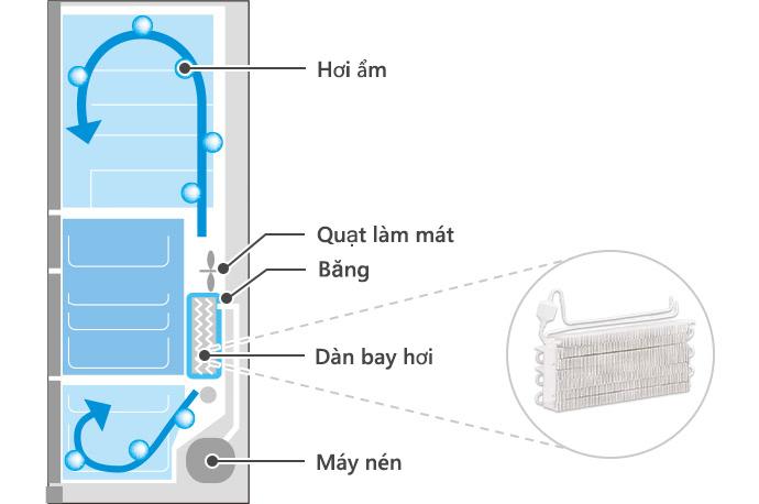 Moisture, Cooling Fan, Frost, Evaporator, Compressor